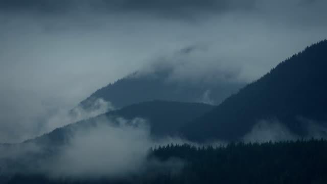 wirbelnden nebel über wald berge timelapse - vancouver kanada stock-videos und b-roll-filmmaterial