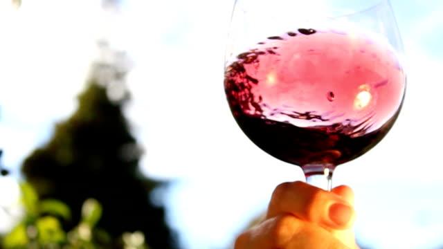 swirling wine in a glass video