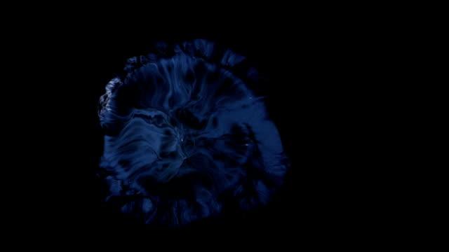 Swirly Whirly Dark Whatnot video