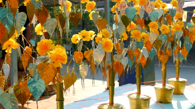 Symbolic artificial trees with golden leaves and paper bills in one of temples of Thailand video