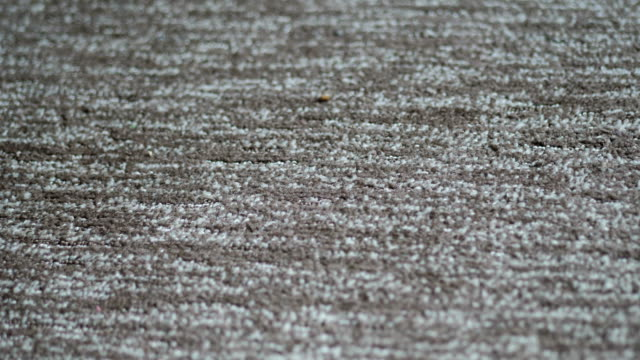 Synthetic carpet on the laminate in the home interior. Close-up texture of textile. 4k video with place for your text. Copyspace Synthetic carpet on the laminate in the home interior. Close-up texture of textile. 4k video with place for your text. Copyspace. fluffy stock videos & royalty-free footage