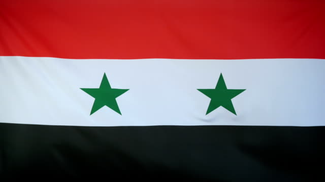 Syria Flag real fabric close up video