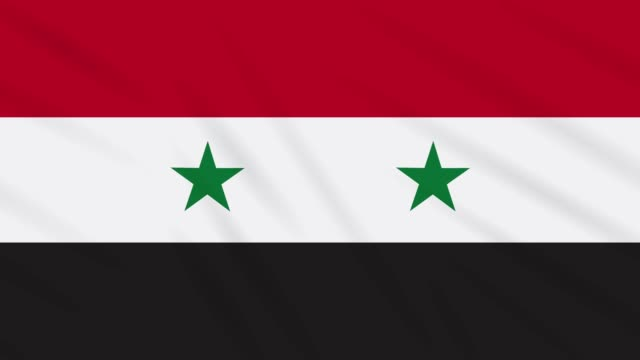Syria flag waving cloth, background loop Syrian Arab Republic flag waving cloth, ideal for background, loop damascus stock videos & royalty-free footage