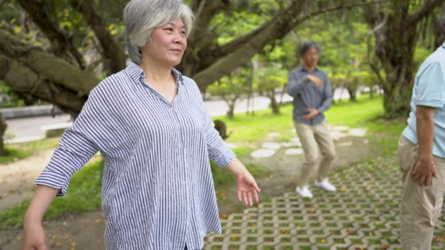 Tai Chi For Healthy Senior Days Group of Asian seniors practicing Tai Chi at the park in Taipei. mindfulness stock videos & royalty-free footage