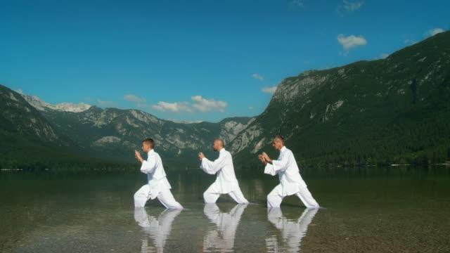 GRULLA DE ALTA DEFINICIÓN: Tai Chi en la naturaleza - vídeo