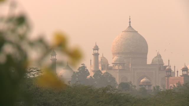 vídeos de stock e filmes b-roll de taj na névoa da manhã - índia