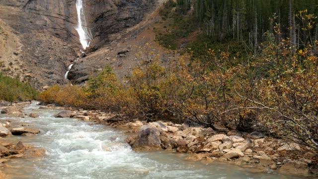 takakkaw falls, yoho milli parkı, alberta, kanada - amerika kıtası stok videoları ve detay görüntü çekimi