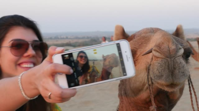 Taking a selfie with camel in desert video