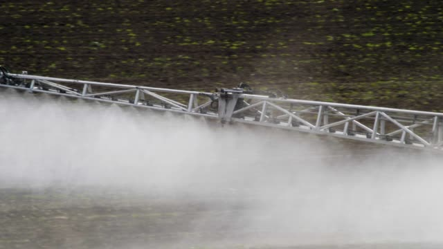 taking care of the crop. tractor fertilizing a cultivated agricultural field. - insetticida video stock e b–roll