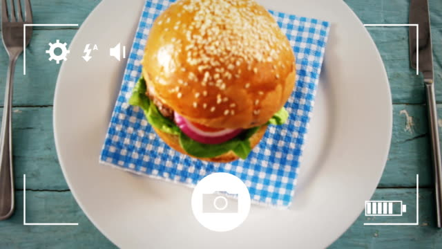 taking photos of food on a digital camera - icona posate video stock e b–roll