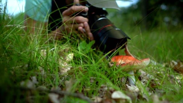 Taking photos of mushroom
