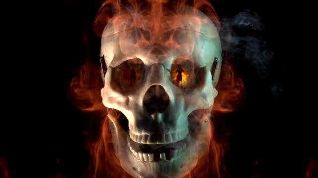 Talking Skull Fire Dancers url=http://www.istockphoto.com/my_lightbox_contents.php?lightboxID=5496031]http://www.lisegagne.com/louis/animals.jpg skull stock videos & royalty-free footage
