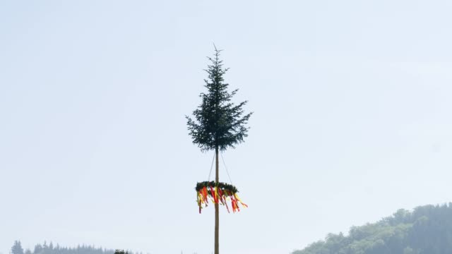 Hohe Maibaum bei deutschem Dorffester-Event – Video