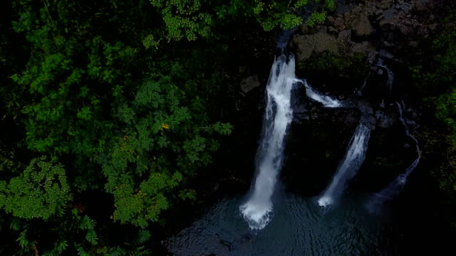 Tall Waterfalls Among Thick Wooded Area on Maui Island