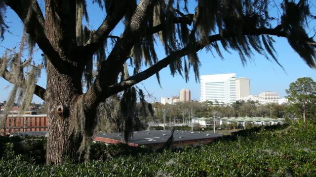 Tallahassee, Florida video