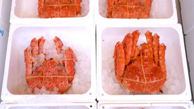 tarabagani アラスカ キング クラブ日本の魚市場, 札幌, 北海道, 日本の - 高級料理点の映像素材/bロール