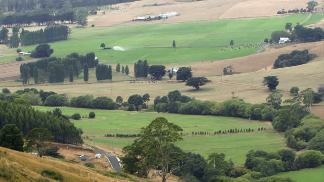 Tasmanian Countryside video