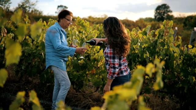 taste is so good - azienda vinicola video stock e b–roll