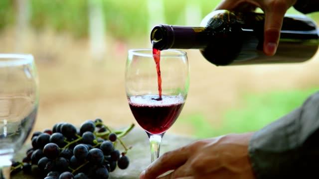 Tasting wine video