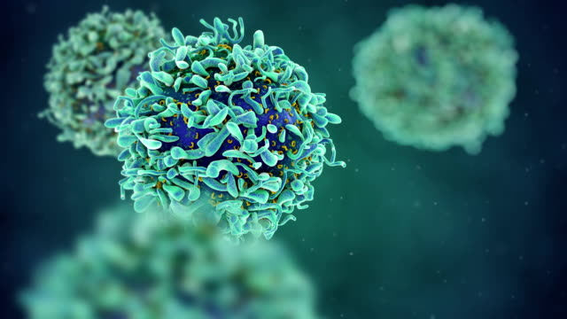 T-cell medical illustration video