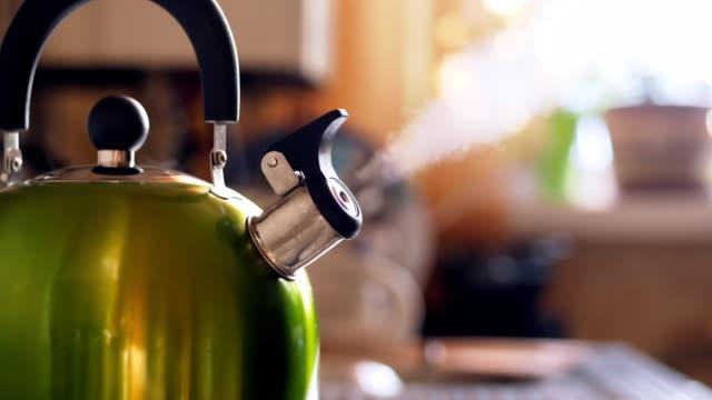 vídeos de stock e filmes b-roll de tea kettle with boiling water on gas stove - ferver