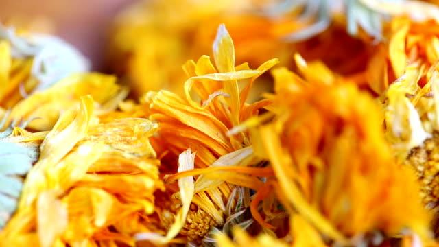 Tea Marigold. video
