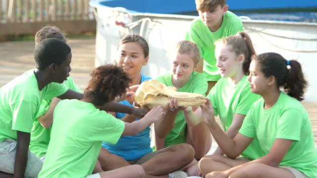 insegnante e bambini esaminano modello di testa del delfino - viaggio d'istruzione video stock e b–roll