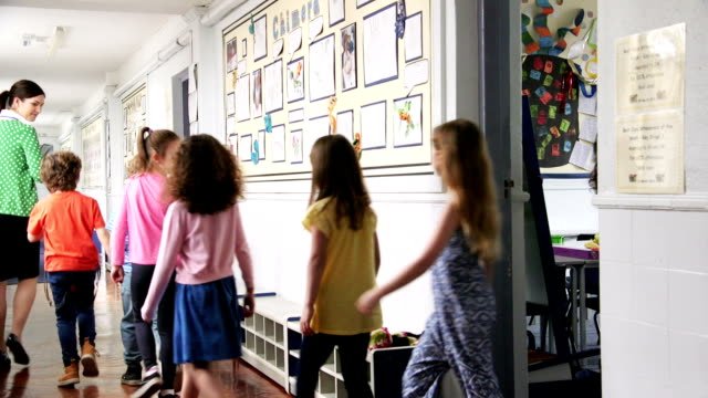 Teachers Walking Children to Their Next Class Young casually dressed students walk out of classroom and down a school corridor with three teachers following behind talking. Rear view elementary age stock videos & royalty-free footage