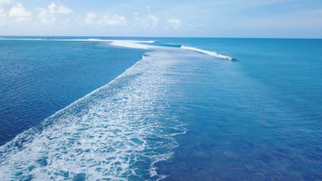 Teahupoo, wave of french polynesia video