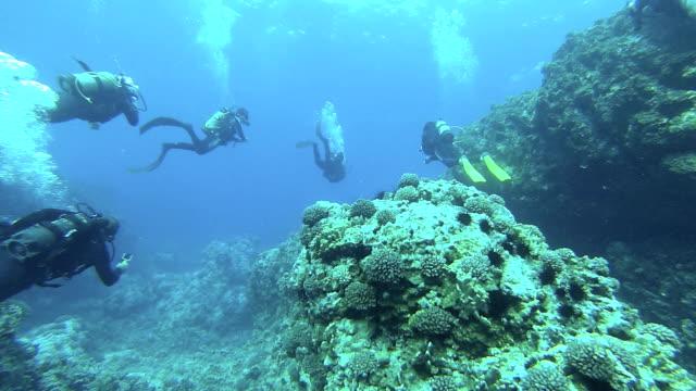 Team Diving video