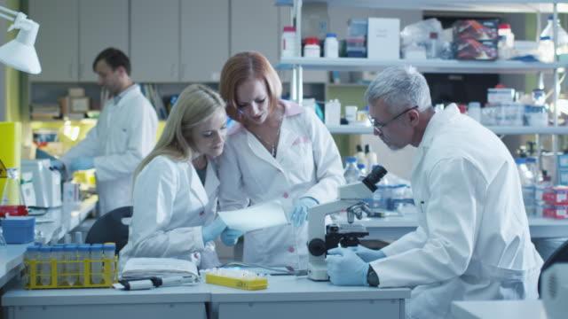 in einem modernen labor arbeiten kaukasische wissenschaftler in weißen mänteln. - medizinexamen stock-videos und b-roll-filmmaterial