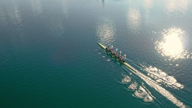 vídeos de stock, filmes e b-roll de equipe aérea de quatro atletas em um quádruplo scull atravessando um lago no sol - remo esporte aquático