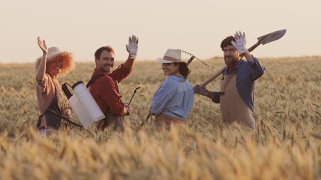 zespół ogrodników spaceru w pszenicy złożony - four seasons filmów i materiałów b-roll