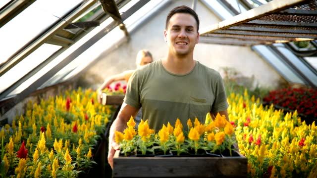 lag arbete i växthus - blomstermarknad bildbanksvideor och videomaterial från bakom kulisserna