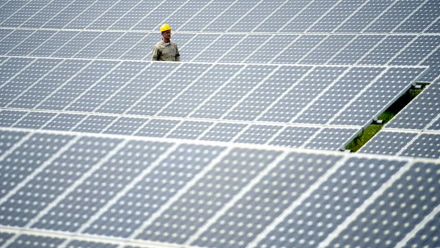 Technician Walking Through Solar Panels; Full HD Photo JPEG video