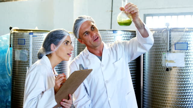 technicians writing on clipboard while examining olive oil 4k - olio d'oliva video stock e b–roll