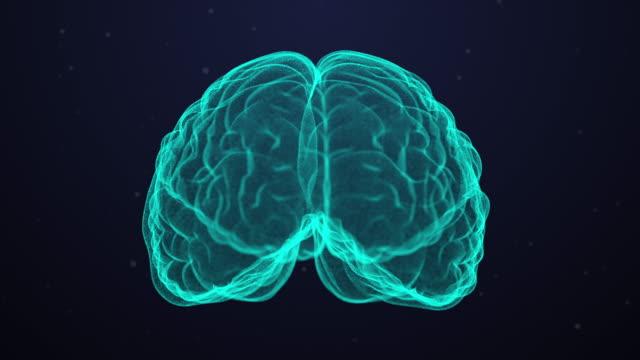 vídeos de stock e filmes b-roll de technological human brain scan - stock video - cérebro humano