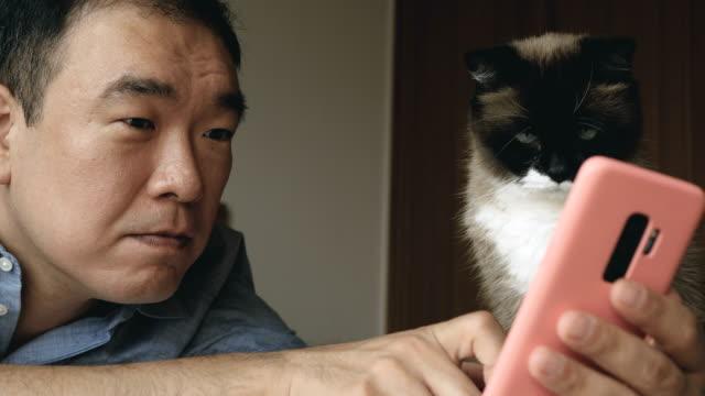vídeos de stock, filmes e b-roll de tecnologia com o gato em casa - coreia