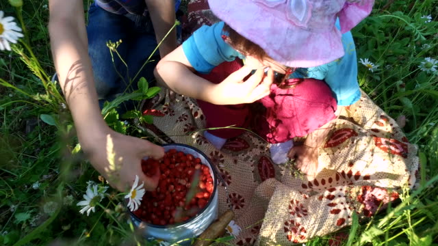 Teen boy and girl child eats wild strawberry on the meadow. video