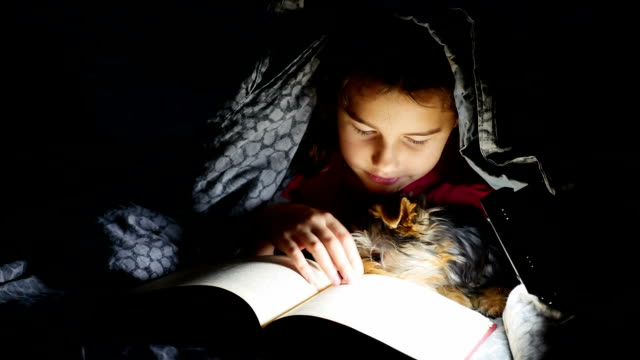 teen child reading girl reads a book dog at night with flashlight lying under a blanket video