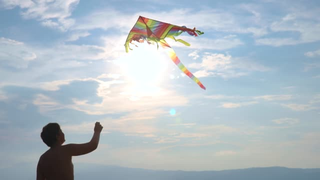Teenage boy flying kite on beach