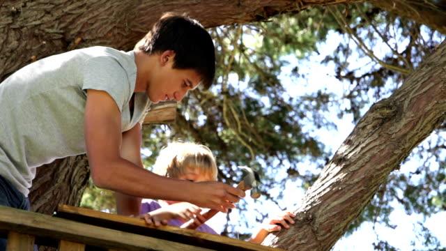 Jeune garçon aide jeune frère de construire une maison dans un arbre - Vidéo