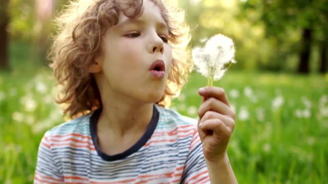 10 代の少年は、夏では、クリアで休んでいます。彼はタンポポに吹いています。花の種は、風によって運ばれます。スローモーション、ダイナミックな映像 - ふわふわ点の映像素材/bロール
