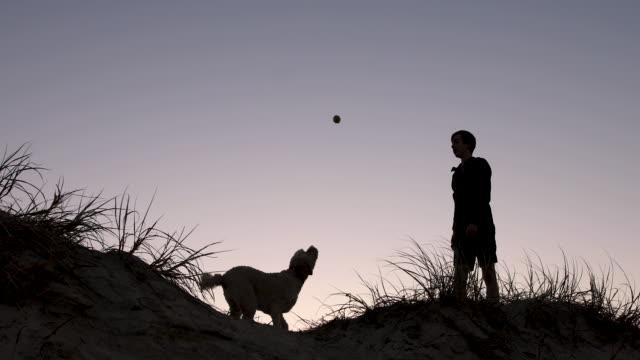 stockvideo's en b-roll-footage met tiener jongen spelen met zijn hond bij zonsondergang - teenager animal