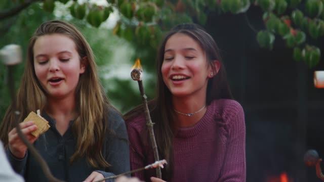 teenager freunde machen s' mores um ein feuer im freien - camping stock-videos und b-roll-filmmaterial