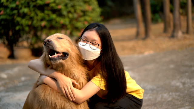 teenage girl in air pollution mask hug golden retriever - face mask stock videos & royalty-free footage