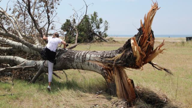 Teenage girl on a broken tree day after the storm