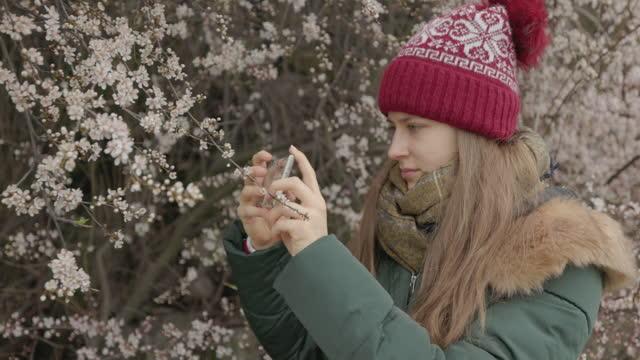 Teenage girl photographing spring flowers on hawthorn bush.