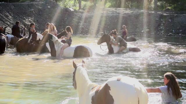 十代少女乗馬馬湖水浴スプラッシュ自由スローモーション 4 k - 自然旅行点の映像素材/bロール