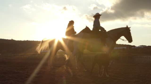 Teenage Girl Training Horse Paddock Sunset Farm Teenage Girl Training Horse Paddock Sunset Farm wild west stock videos & royalty-free footage